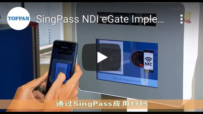 video image-SingPass NDI